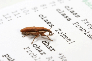 Bugtracking for developers